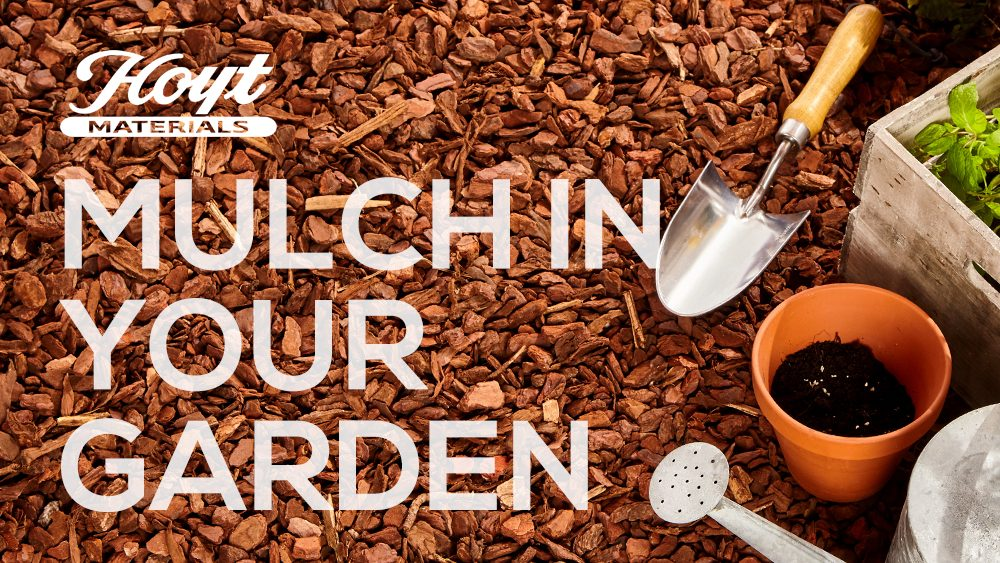 Mulch in your garden
